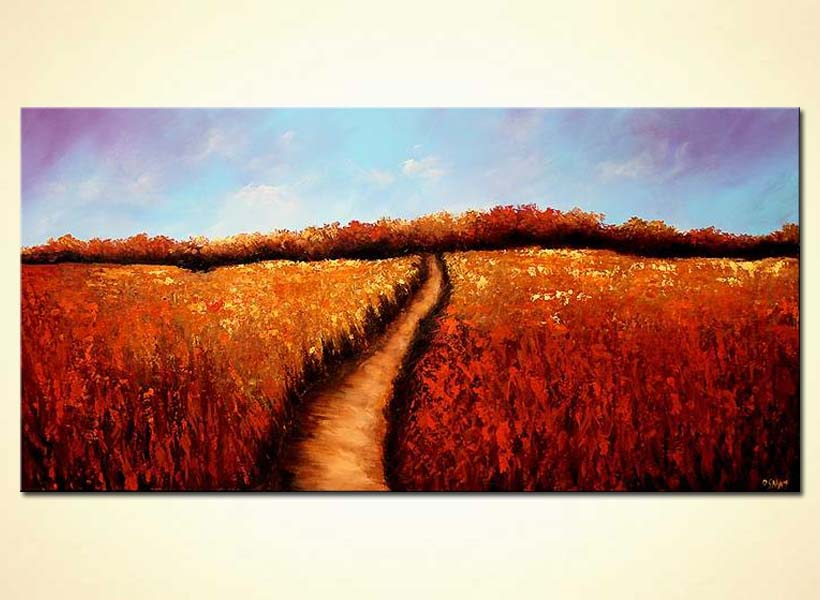 red field of flowers with trail in the middle