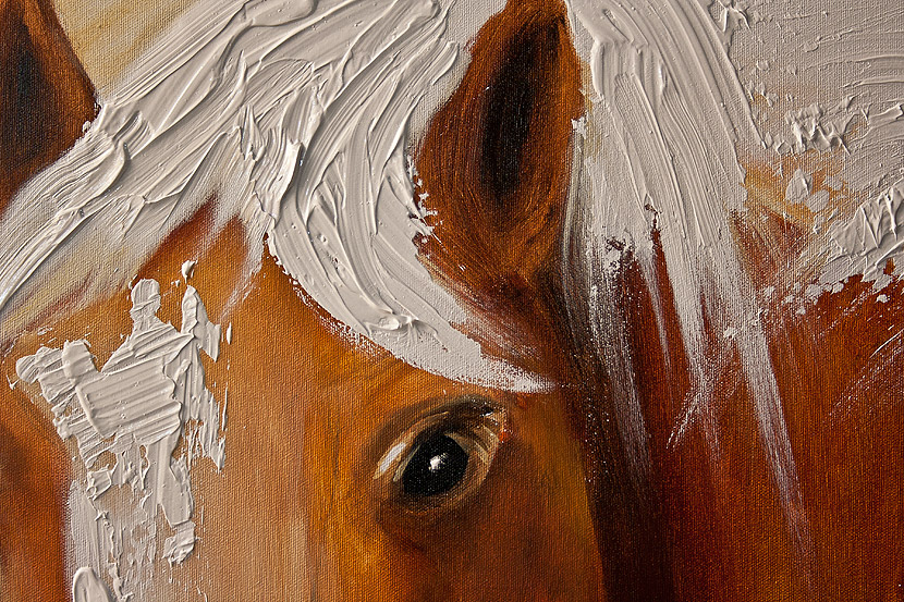Horse Head Painting Canvas