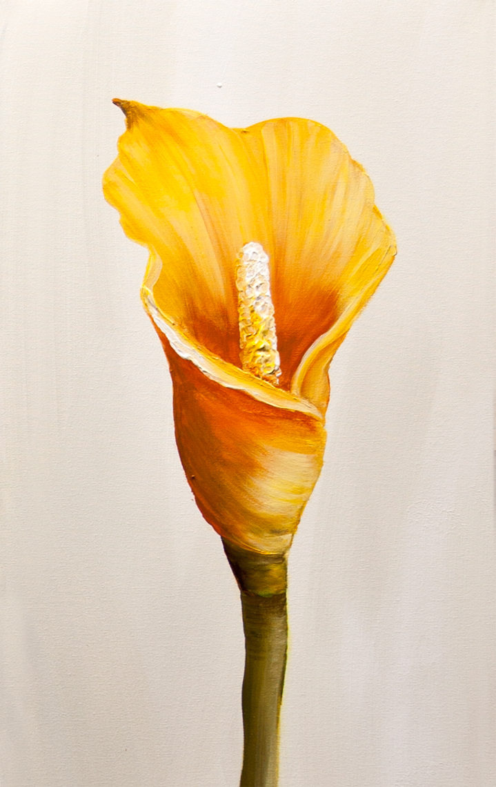 painting calla lily flowes home decor floral art 7627